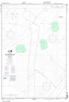 11359 - Loop Deepwater Port Louisiana Offshore Oil