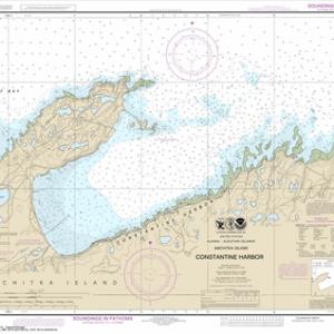 16446 - Constantine Harbor, Amchitka Island