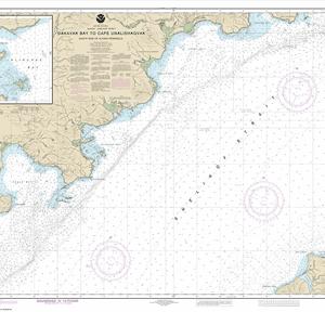 16575 - Dakavak Bay to Cape Unalishagvak; Alinchak Bay