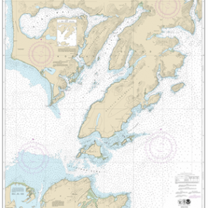 16590 - Kodiak Island Sitkinak Strait and Alitak Bay