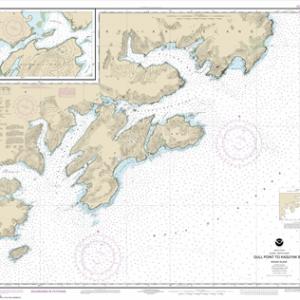 16592 - Kodiak Island Gull Point to Kaguyak Bay; Sitkalidak Passage