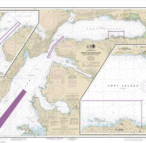 16707 - Prince William Sound-Valdez Arm and Port Valdez; Valdez Narrows; Valdez and Valdez Marine Terminal