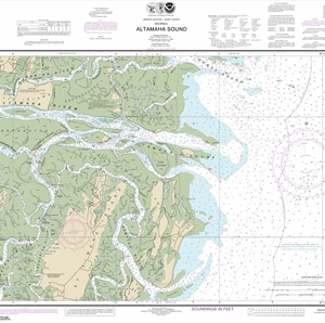 11508 - Altamaha Sound